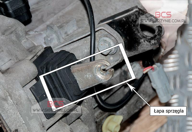 www.skrzynie.com.pl/images/companies/6/zdjecia/renault/renos-splinka1-800.jpg